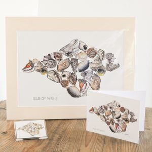 Shell Print, Card & Magnet